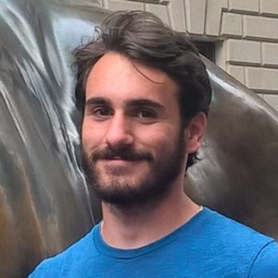 David Berardo avatar